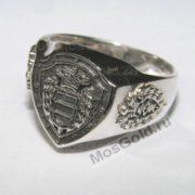 Перстень с щитом